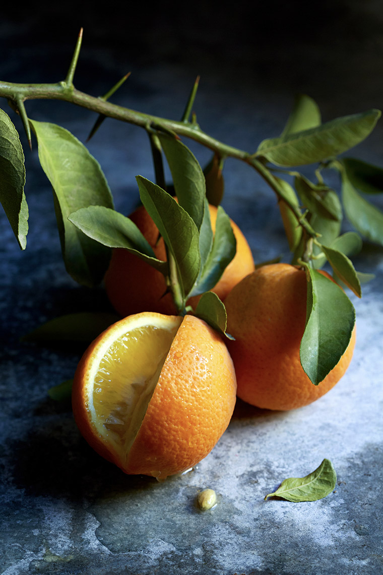 Robyn Valarik San Francisco Food & Drink Stylist - Bergamot, fresh, orange, branch, tree, thorns, sliced, organic, fresh, citrus, fruit, photography